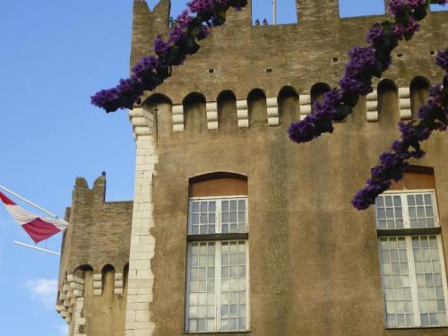 castle-and-flowers-cagnes