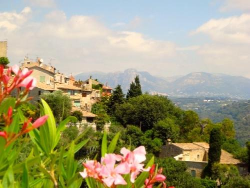 cagnes-flower-view