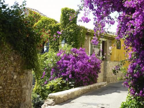 cagnes-flowery-house