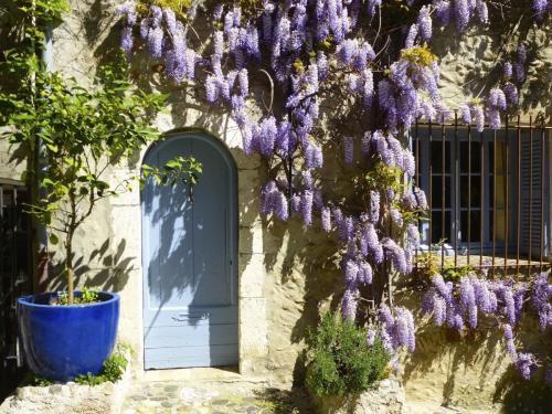 ccagnes-lilac-door