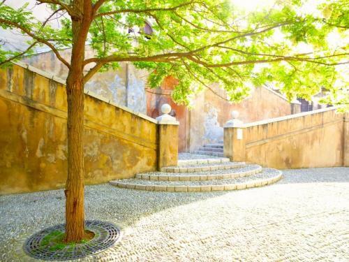 haut-de-cagnes-castle-stairs